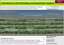 Screenshot of soybean animated lesson and link